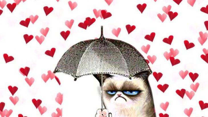 ho sempre odiato san valentino